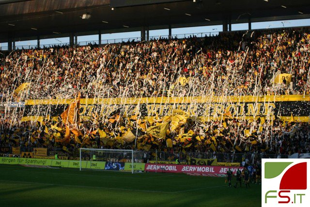 Young Boys tifosi