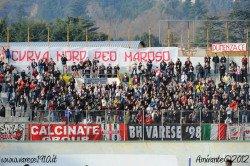 Ultras Varese