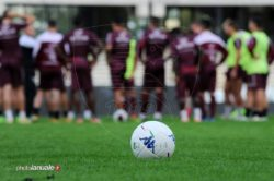 Salernitana: la società campana ha apportato una serie di modifiche al proprio staff nel settore giovanile, dalla squadra Primavera fino all'Under 15.